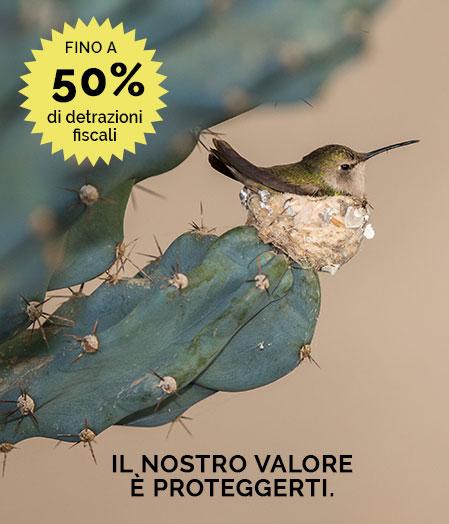detrazioni-fiscali-inferriate-sicurezza-italia